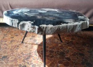 versteinerter fossiler Holztisch Platte poliert petrified wood inkl. Beine vH76